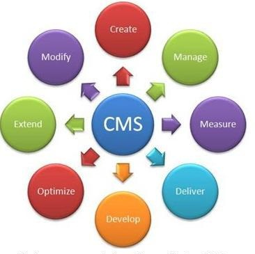 Website with CMS in faridabad,Noida,Gurgaon,Delhi,Ghaziabad